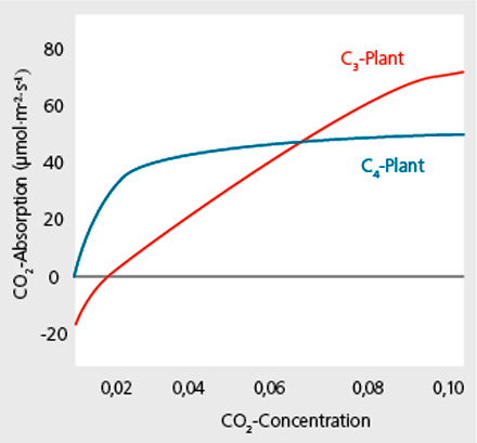 CO2 Gassing Carbon dioxide manuring