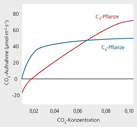 CO2-Begasung Kohlenstoffdioxid Duengung
